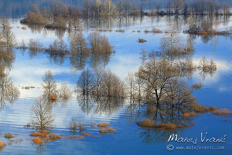 Poplavljena reka Unica