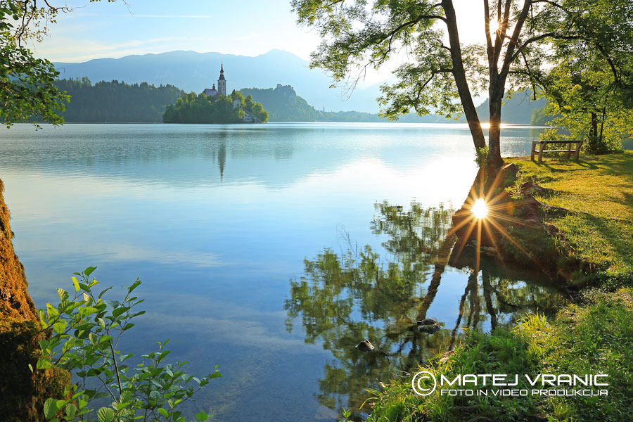 Blejsko jezero